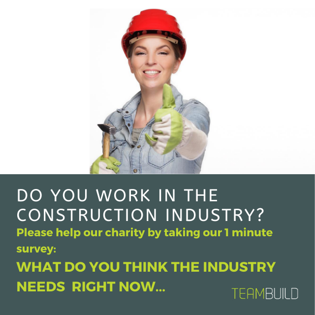 Teambuild survey